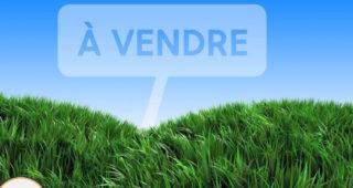 Terrain a batir Haute Marne, Meuse et Vosges 24